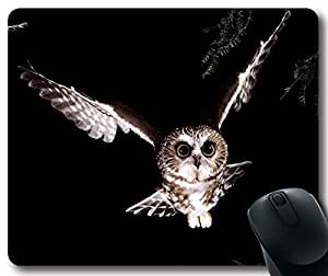 Animals & Birds Saw-Whet-Owl Mousepad,Custom Rectangular Mouse Pad by rushername