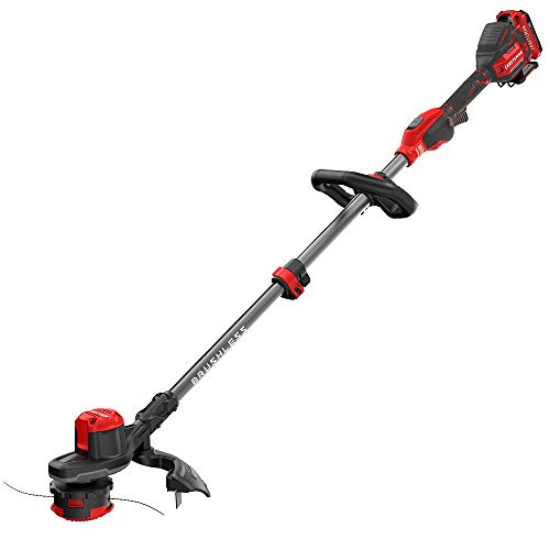 CRAFTSMAN V20 WEEDWACKER Cordless String Trimmer with Quickwind, 13-Inch (CMCST920D2) ()
