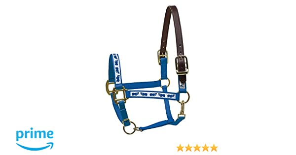 Perris Leather Pony Royal Blue with Hippos Nylon Ribbon Safety Halter