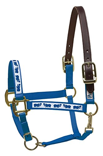 Perri's Leather Horse Royal Blue with Hippos Nylon Ribbon Safety (Safety Halter)
