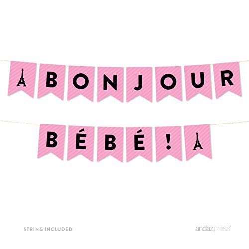 andaz-press-paris-bonjour-bebe-girl-baby-shower-collection-hanging-pennant-party-banner-with-string-