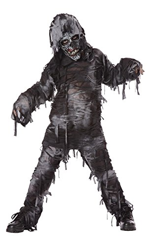 Totally Ghoul Rotten Dead Costume, Boy's Size Large, for ages 8-14 (Kids Mummy Costumes)