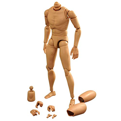 FAERIE 1/6 Male Figure Body Narrow Shoulder Ver 4.0 for Hot Toy Baby Doll Toys ()