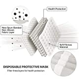 [50 Pc/Box] Face Mask Disposable Non Surgical 3-Ply
