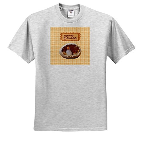 Price comparison product image 3dRose Beverly Turner Easter Design and Photography - Chicken and Baby in Cracked Egg, Orange Plaid, Happy Easter, Lace Tag - T-Shirts - Youth Birch-Gray-T-Shirt Large(14-16) (ts_276179_30)
