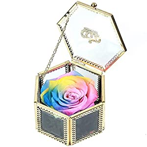 Rainbow Rose, Handmade Preserved Roses Present, Exquisite Preserved Fresh Rose Upscale Immortal Rose Flowers Best Gift for Mothers Day, Female Birthday, Anniversary, Christmas 7