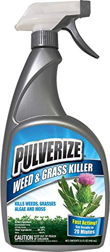 Pulverize Non-Selective Weed and Grass Killer Spray - Fast Acting, Non-Staining Weed and Crabgrass Killer - 32 Ounce Trigger Spray Bottle (Best Moss Killer For Grass)