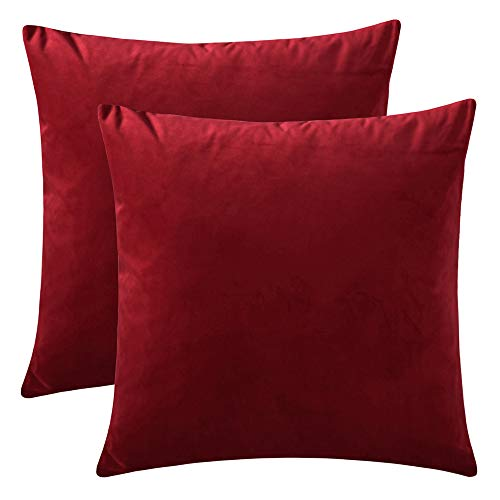 Rythome Set of 2 Comfortable Throw Pillow Cover for Bedding, Decorative Accent Cushion Sham Case for Couch Sofa, Soft Solid Velvet with Zipper Hidden - 16