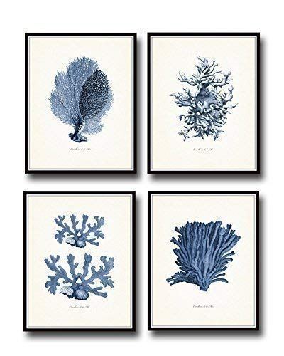 Indigo Sea Coral Set of 4 Giclee Fine Art Prints - Unframed ()