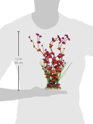 Amazon.com: eDealMax Jardín Paisajismo acuático plástico Hojas del ornamento del acuario, DE 12 pulgadas, púrpura/Rojo: Pet Supplies