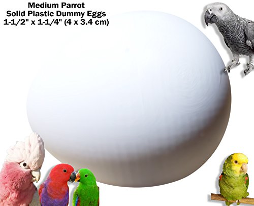 DummyEggs for African Grey/Eclectus/Amazon/Small Cockatoo/Small Macaw/Large Dove Realistic Solid White Plastic 1.5'' x 1.25'' (4 x 3.4 cm) Control Egg Laying! (Set of 2) by DummyEggs