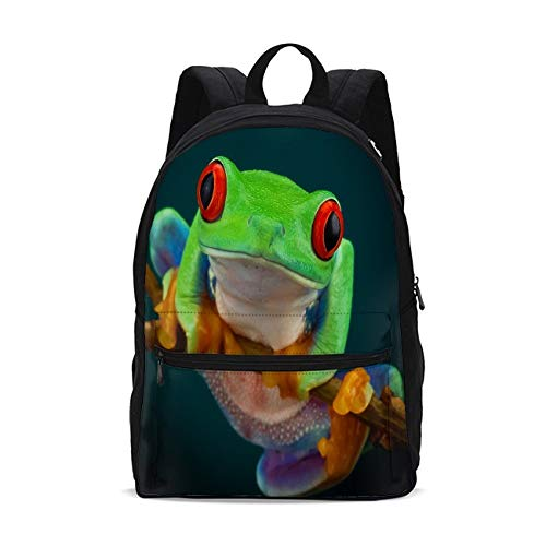 KiuLoam Green Tree Frog on Branch Kids School Backpack 17 Inch BookBag Teens Shoulder Travel Bag Rucksack for Boys Girls Back to School