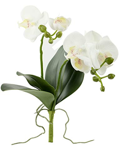 Rinlong Artificial Moth Orchid White Silk Phalaenopsis Orchid Flower Stem with Leaves Buds Root for DIY Bonsai Floral Arrangement Indoor Decor (Flower Silk Arrangment)