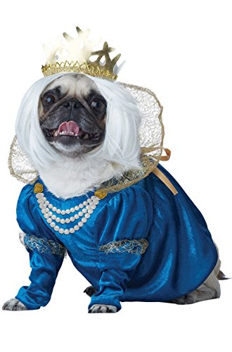 Medieval Queen of Bones Pet Dog Costume Dress Wig Crown Princess Halloween XS-LG (America Deluxe Pirate Captain Costume)