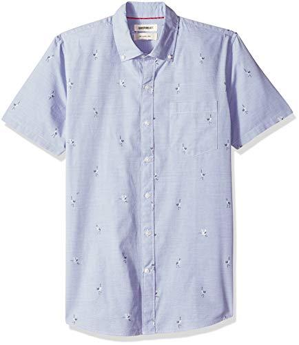 Goodthreads Men's Slim-Fit Short-Sleeve Dobby Shirt, -blue Stork, Small