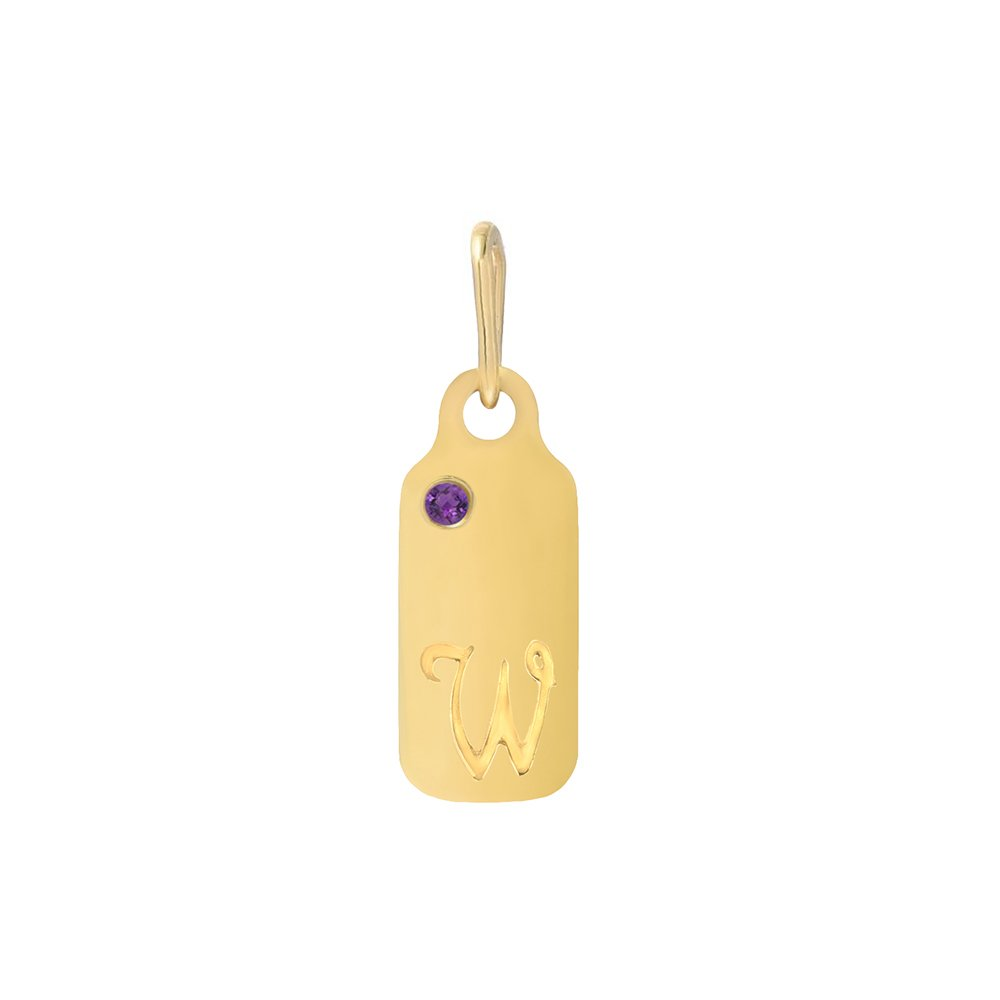 14k Gold Amethyst February Birthstone Cursive Letter W Dog-tag Necklace