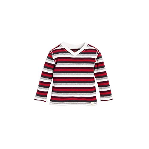 Burt's Bees Baby Boys T-Shirt, Long Sleeve V-Neck and Crewneck Tees, 100% Organic Cotton, Multi Stripe, 18 Months - Infant Multi Apparel