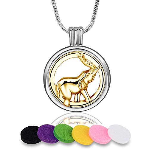 INFUSEU Aromatherapy Essential Oil Diffuser Locket Pendant Necklace with 12 PCS Refill Pads for Women Two Tone Jewelry ()