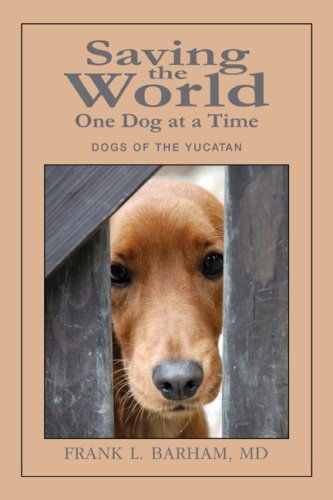 Saving the World One Dog at a Time: Dogs of the Yucatan
