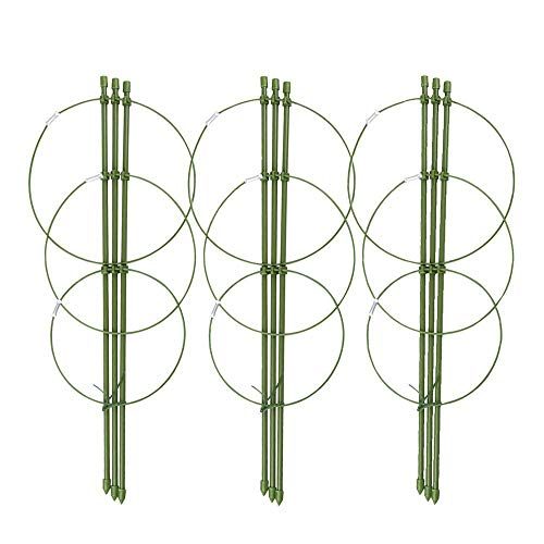 Mini Trellis Potted Climbing Plants Support Pack of 3, 5.5'' Dia x 6.3'' Dia x 7'' Dia x 17.7'' H, 3 Rings by RTWAY