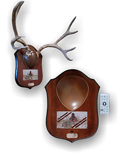 Mountain Mike's Reproductions Digital Plaque Master Mount (Deer Hunting Calendar Best Time Hunt)