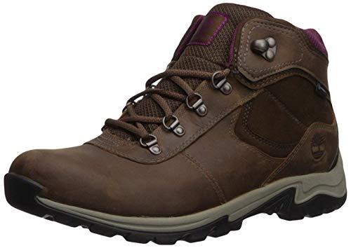 Timberland Women's Mt. Maddsen Mid Lthr WP, Brown, 8.5 Medium US
