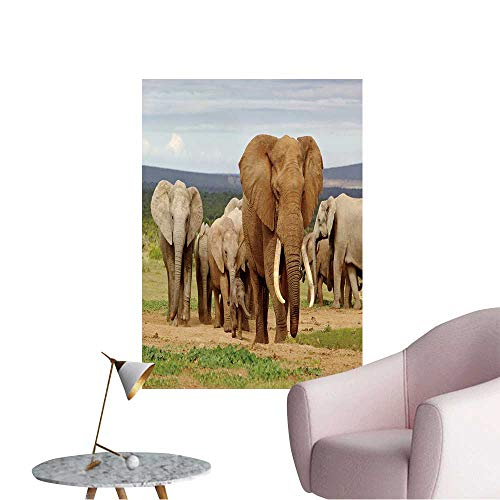 "Wall Decals an Elephant Herd,led by a Magnificent 'Tusker' Bull at a Waterhole in The Elephant Park. Environmental Protection Vinyl,24""W x 40""L"