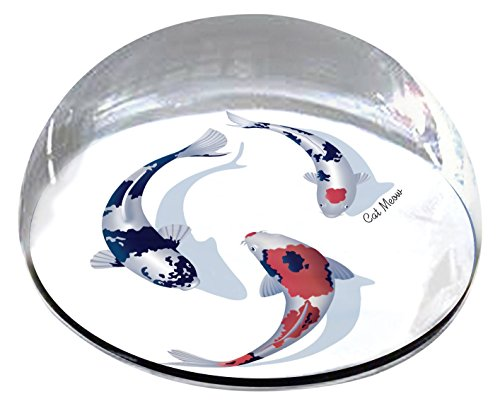"Forever Crystal ""Painted Koi Fish Pet Memorial Magnet from Forever Crystal"