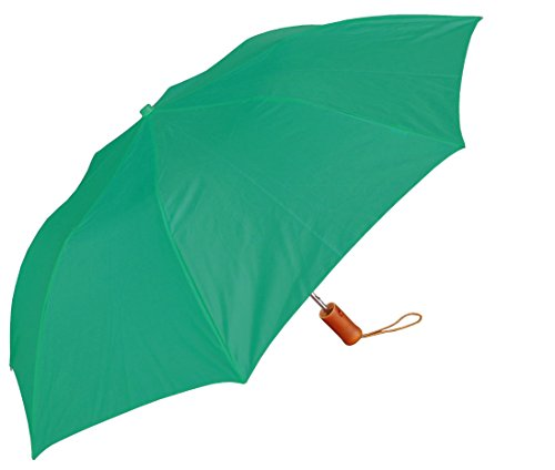 RainStoppers W001 Auto Open Collapsible Arc Umbrella with Wood Handle, Teal, 42