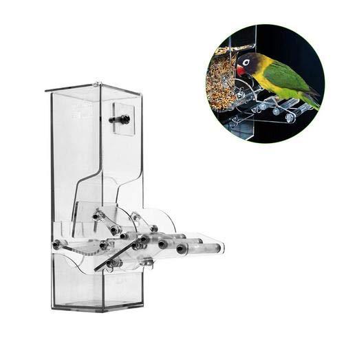 BEENXY Alimentador automático de Aves, Accesorios de Jaula de Aves ...