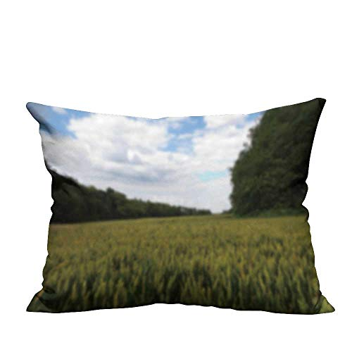 - YouXianHome Sofa Waist Cushion Cover Wheat Grow in a fiel in The chilterns ENGL Out Focus Decorative for Kids Adults(Double-Sided Printing) 19.5x26 inch