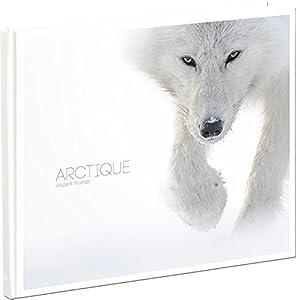 vignette de 'Arctique (Vincent Munier)'