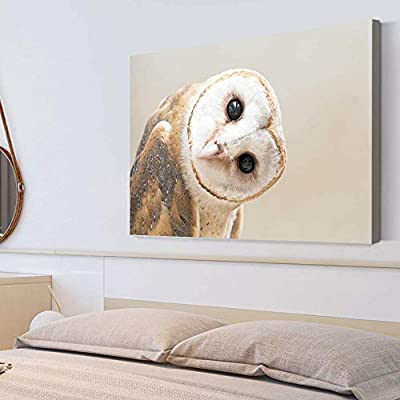 Elegant Piece, Classic Artwork, Adorable Funny Owl Painting Wall Poster Decor for Living Room Framed