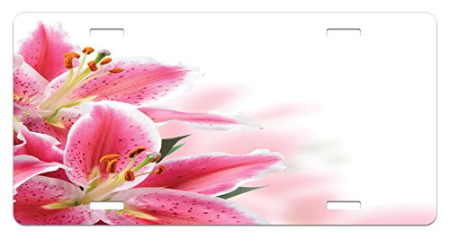 White Lily Florist (Pink and White License Plate by Ambesonne, Florist Theme with Lilies Close Up A Fresh Bouquet for the Loved Ones, High Gloss Aluminum Novelty Plate, 5.88 L X 11.88 W Inches, Pink Orange Green)