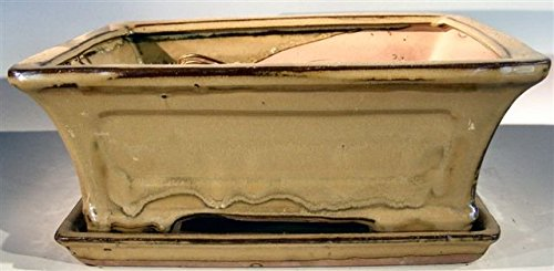 Bonsai Boy's Olive Green Ceramic Bonsai Pot - Rectangle Professional Series with Attached Humidity Drip Tray 10 25 x 8 0 x 4 125 OD 9 0 x 7 0 x 3 25 ID - Glazed Pottery Cover