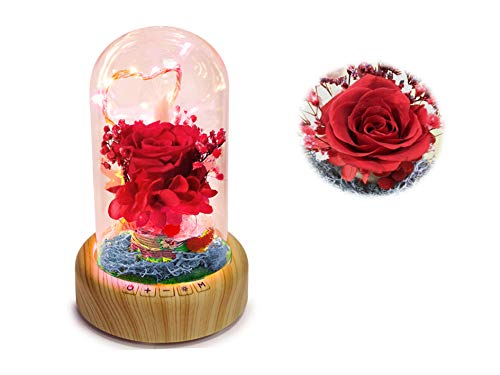 SWEETIME Forever Rose - Enchanted Real Rose Lamp Light with Bluetooth Speaker, Red Rose Flower in Glass Dome, Handmade Preserved Rose Gift for Birthday/Anniversary/Valentine's Day/Christmas. (Red Valentines Roses)