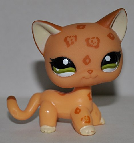 Littlest Pet Shop is a Canadian–American animated television series developed by Tim Cahill and Julie McNally-Cahill. The series is based on Hasbro's Littlest Pet Shop toy line, and features Blythe Baxter (voiced by Ashleigh Ball, with the character based off the doll of the same name) as the main protagonist, as well as other characters.