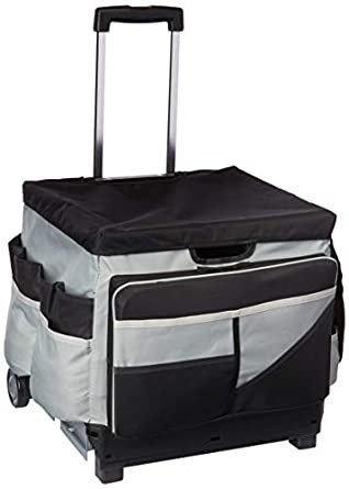 Image Unavailable. Image not available for. Color  ECR4Kids Universal Rolling  Cart with Saddle Bag Organizer ... f8888d8ba064c