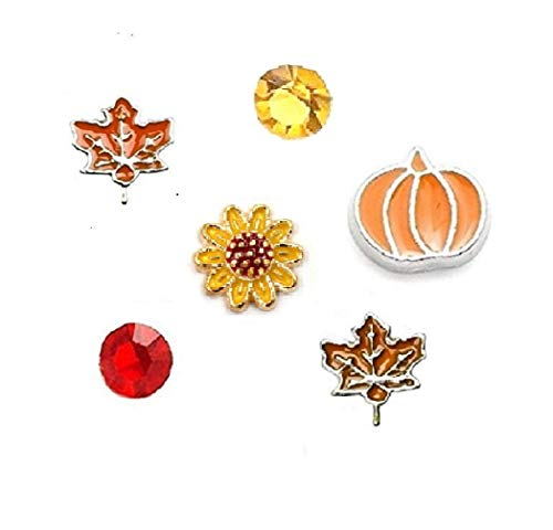 Charms For Floating Lockets - Cherityne Fall/Autumn Themed Set of 6