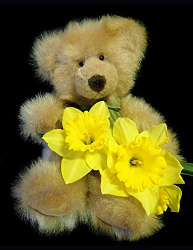 Notebook: Bear teddy toy cute daffodils flowers spring teddies toys play playground soft cuddly