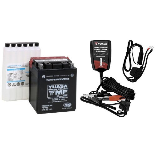 Charger For Totally Dead Car Battery
