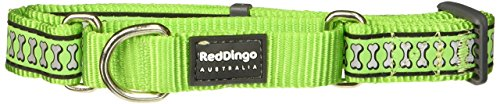 Red Dingo Martingale Collar Reflective Bones, Medium-Large, Lime Green