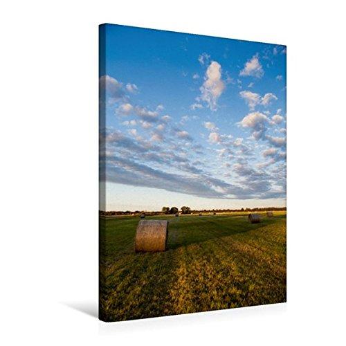 Calvendo Premium Textil-Leinwand 50 cm x 75 cm hoch, Feld mit Heuballen   Wandbild, Bild auf Keilrahmen, Fertigbild auf Echter Leinwand, Leinwanddruck Orte Orte B01LWT9I5H Fotografie Langfristiger Ruf | Angenehmes Aussehen