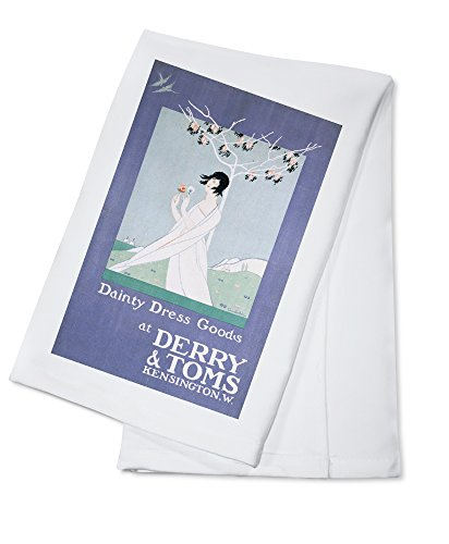 Amazon Derry And Toms Dainty Dress Goods Vintage Poster