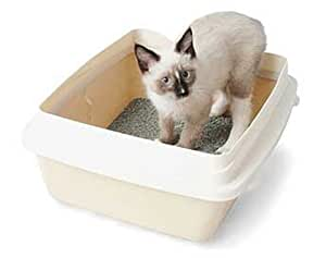 Litter Pan With Rim Large
