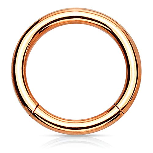 BodyJ4You Piercing Ring Hinged Segment Clicker 18G Hoop 6mm Rose Goldtone Tragus Nose Daith Ear (Rings Horse For Gold Women)