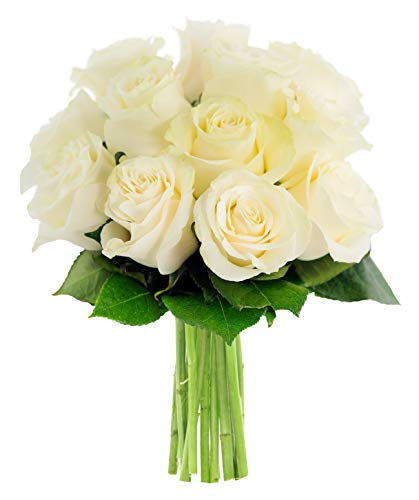KaBloom Bouquet of 12 Fresh White Roses (Farm-Fresh, Long-Stem)