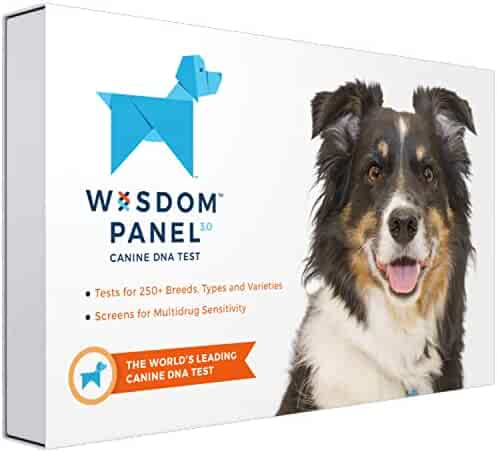 Wisdom Panel 3.0 Breed Identification Dog DNA Test Kit | Canine Genetic Ancestry Test Kit for Dogs
