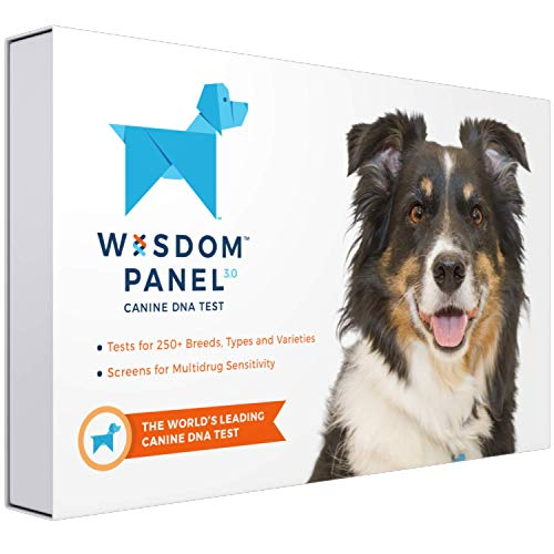 - Wisdom Panel 3.0 Breed Identification DNA Test Kit Canine Genetic Ancestry Test Kit for Dogs