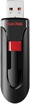 SanDisk Cruzer 256GB USB 2.0 Flash Drive